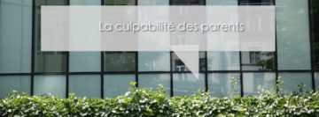 Décrochage scolaire: paroles de jeunes.   Un projet des 3 Services d'Accrochage Scolaire (SAS) bruxellois